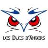 Prochain match des Ducs d'Angers