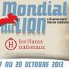 28ème édition du Mondial du Lion-d'Angers