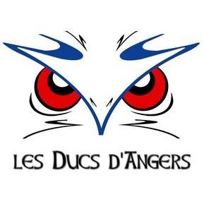 duc angers